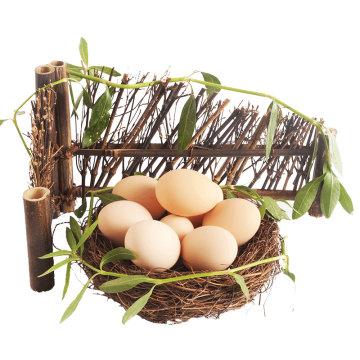 (代发)霍邱农家草鸡蛋家庭装40枚