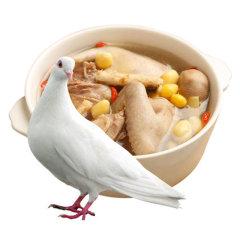 (代发)珍品乳鸽天麻膳食套餐B2【第二件0元,下单请选2件】