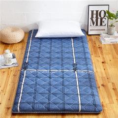 (代发)VIPLIFE磨毛加厚软床垫榻榻米家庭床垫(床垫*1)【尺寸:180*200CM】 长颈鹿
