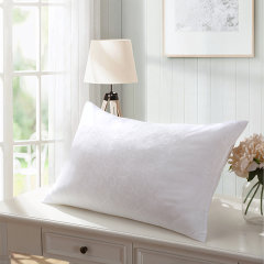 (代发)罗莱LOVOTG-柔梦舒眠枕中枕*1【尺寸:73*47cm】