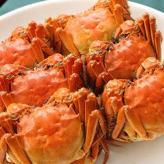 阳澄湖大闸蟹美味尝鲜组(公蟹3.5两*5只、母蟹2.5两*5只、赠紫苏、养胃姜茶、特制蟹醋、剪刀)