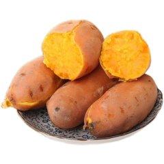 (代发)云南黄金蜜薯5斤【单果50-150g】