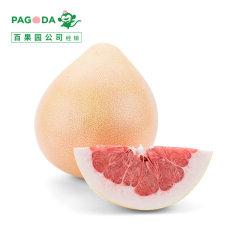 (代发)三红蜜柚(精品)2个礼盒装【单果重:2.3-2.8斤】