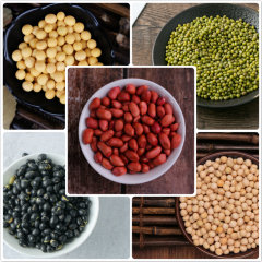 酥田系列 豆浆豆组合早餐豆浆原料料包打豆浆的五谷杂粮黄豆黑豆绿豆花生白豌豆袋装组合 1kg