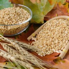 酥田系列 天造地设燕麦米350g