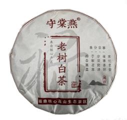 守棠燕牌老树白茶2020