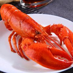 崇鲜 加拿大深海熟冻波士顿400-300克 龙虾冷冻波斯顿龙虾